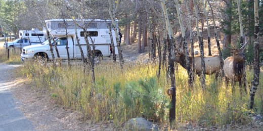 favorite-campground-colorado-moraine-campground