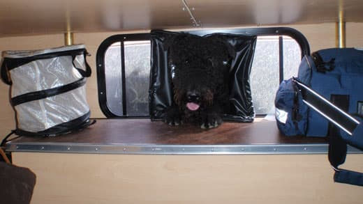 Ultimate-Off-Road-Camper-dog-boot